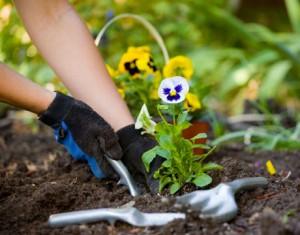 Gardening Manchester